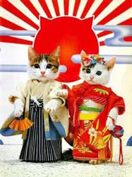 The Samurai Kittens
